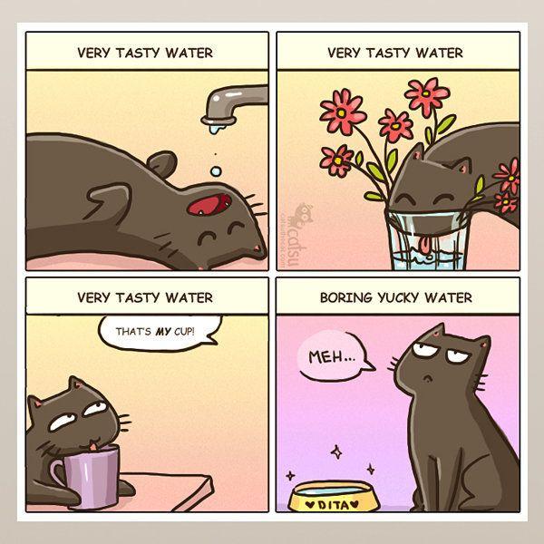 猫ってやっぱり変。理解できない行動をまとめてみたら......(漫画)