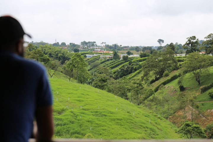 Pereira's countryside as viewed from the San Carlos Lodge
