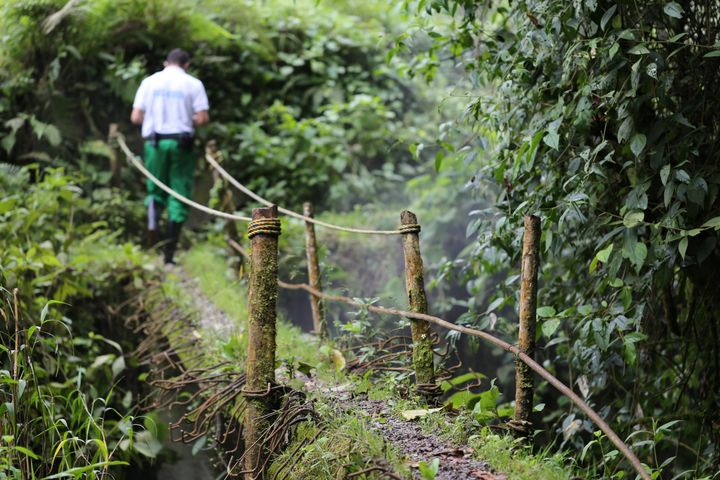 There is nothing quite so magical as seeing Colombia's natural green beauty working in harmony with humanity