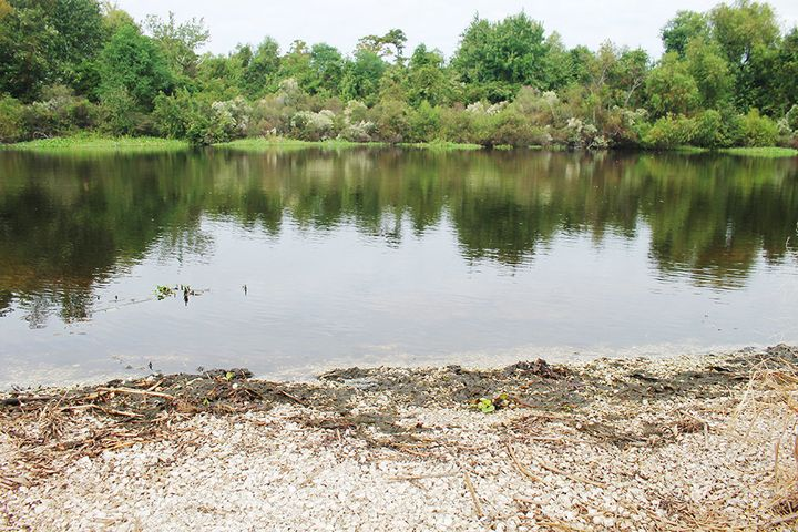 The location in LaPlace, Louisiana, where Sharon Robinson's body was found face-down in shallow water.