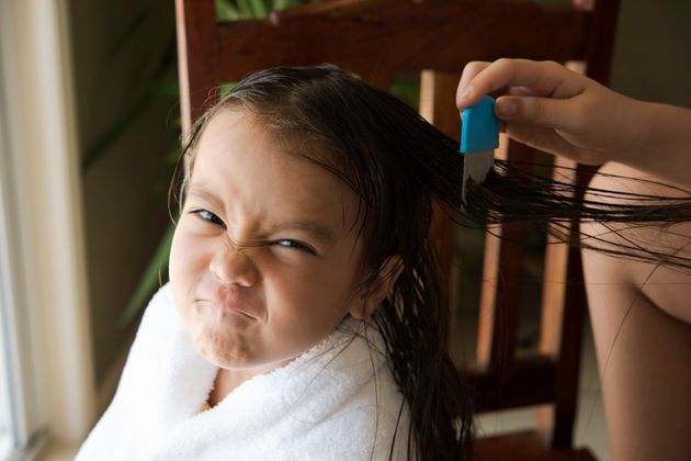 National Bug Busting Day: 11 Facts About Head Lice A Pharmacist Wants Parents To