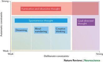 This chart presents a visualization of different types of thinking, including variations of spontaneous thought.
