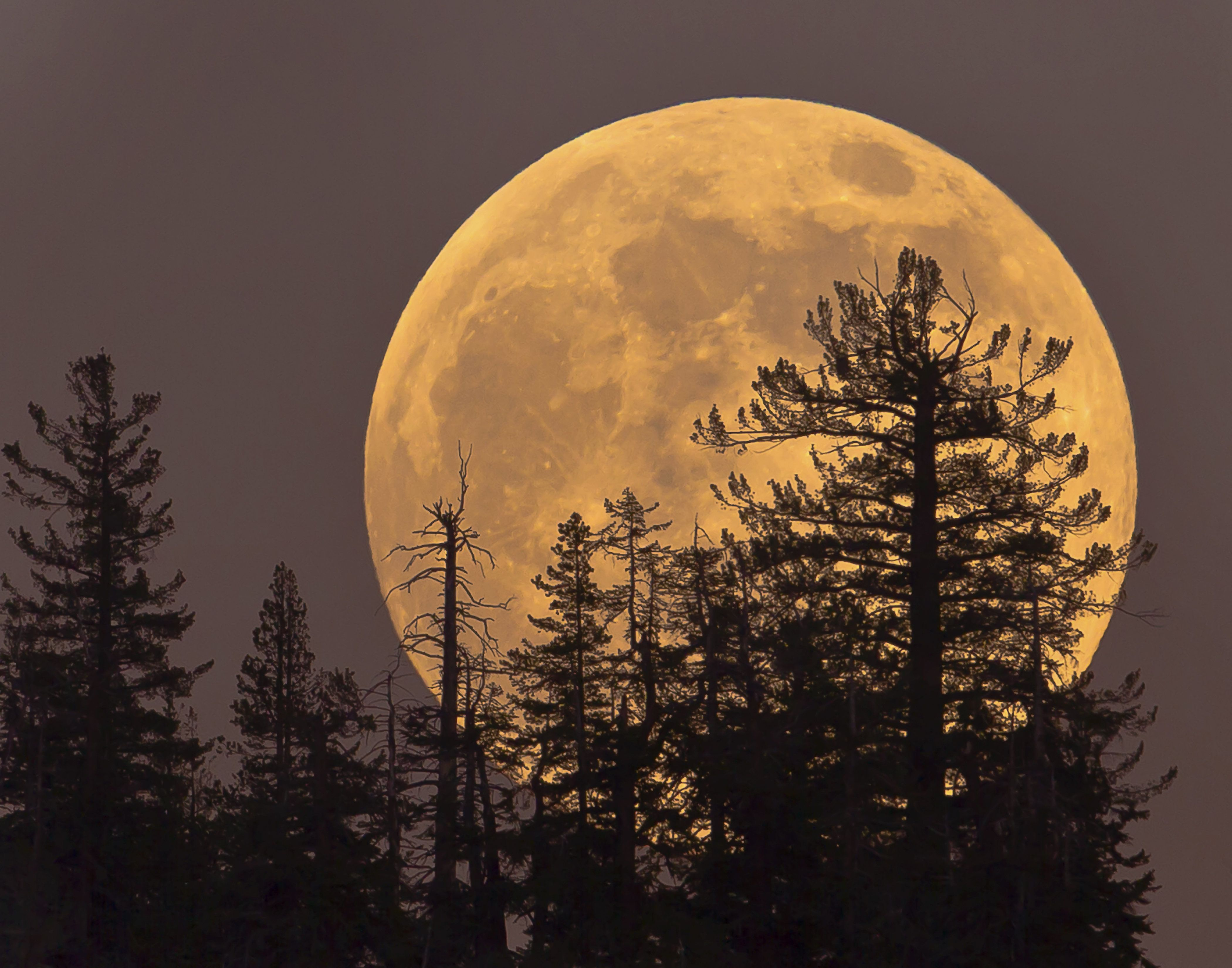 A Supermoon Like This One Won T Come Again Until 2034 Huffpost