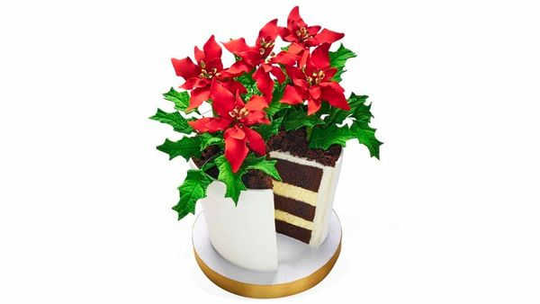 """<strong>Fleur Plan</strong> <br><br>""""If it were possible to get a PhD in cake, Gayle King would be a doctor of frosting! So w"""