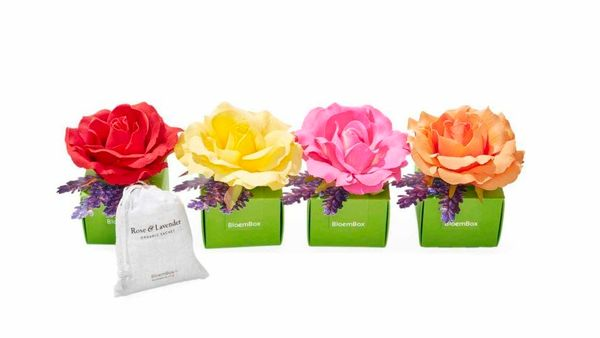 """<strong>Eau, Yes! </strong><br><br>""""Some may look at this ultrafeminine sachet filled with dried organic rose petals and lave"""