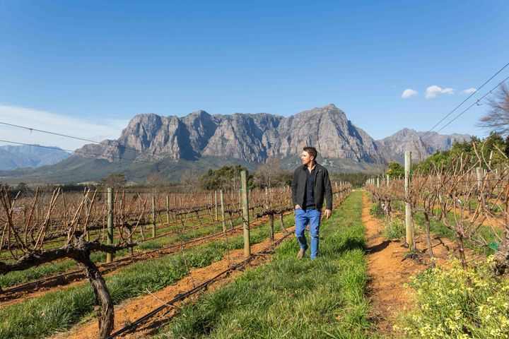 <p>Exploring the Winelands, just 40 minutes from Cape Town</p>