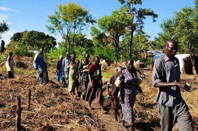 South Sudanese refugees travel through fields and the bush to their new plots. About 250 families were given plots at Maaji r