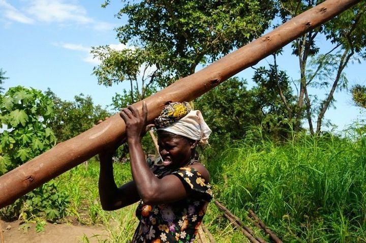 A South Sudanese refugee carries a pole she can use to build shelter on her plot at Maaji refugee settlement.