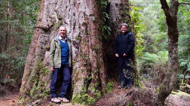 Dr Bob Brown and Jenny Weber, of the Bob Brown Foundation, in the Tarkine, Tasmania.