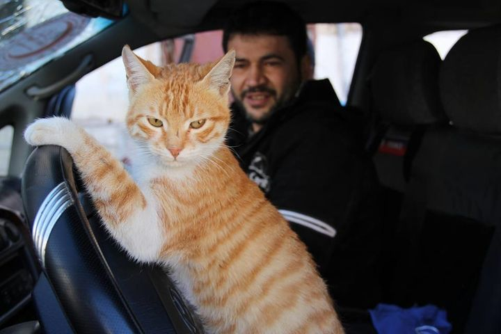 Aljaleel and a cat pose in the vehicle he uses as an ambulance.
