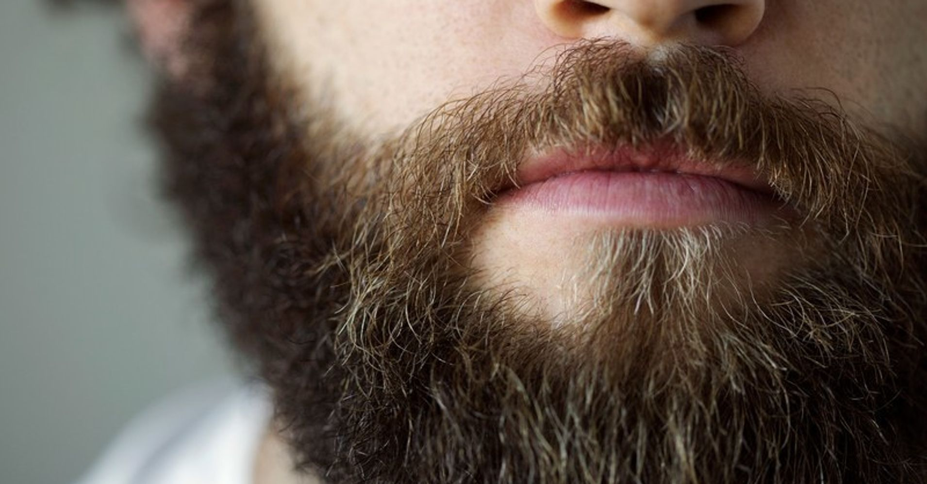 victors beard essay
