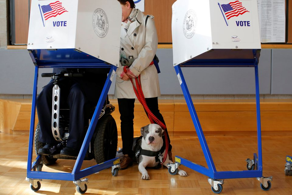 Picasso the pit bull waits as owner George Gallego fills out his ballot with his wife, Julia, during voting for the U.S presi