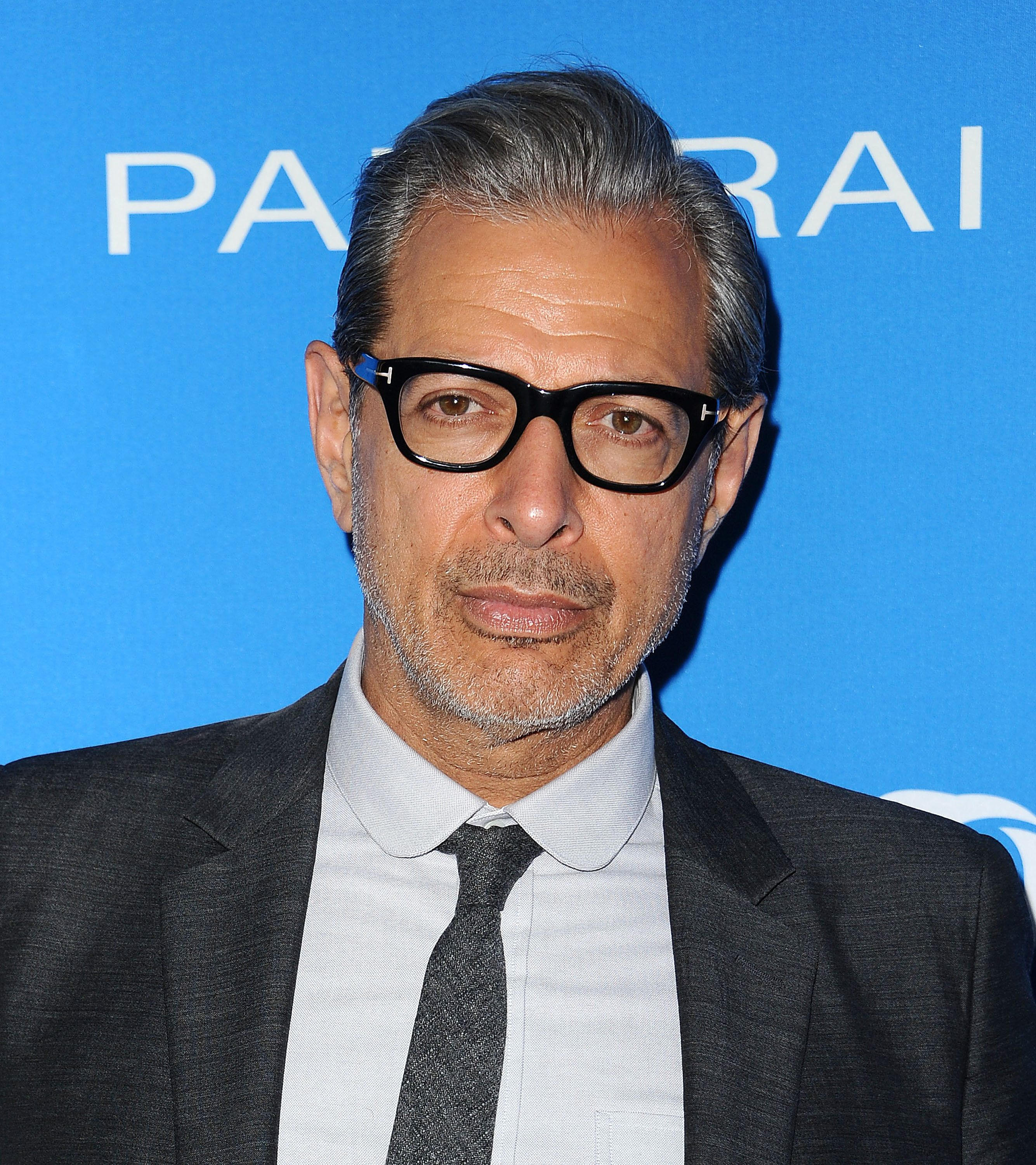 LOS ANGELES, CA - JULY 19:  Actor Jeff Goldblum attends Oceana: Sting Under the Stars on July 18, 2016 in Los Angeles, California.  (Photo by Jason LaVeris/FilmMagic)