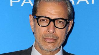 LOS ANGELES, CA - JULY 19:  Actor Jeff Goldblum attends Oceana: Sting Under the Stars on July 18, 2016 in Los Angeles, California.  (Photo by Jason LaVeris/FilmMagic)