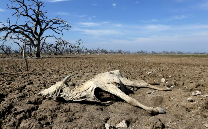 The Pilcomayo river in central South America faced its worst drought in almost two decades this year. As global temperat