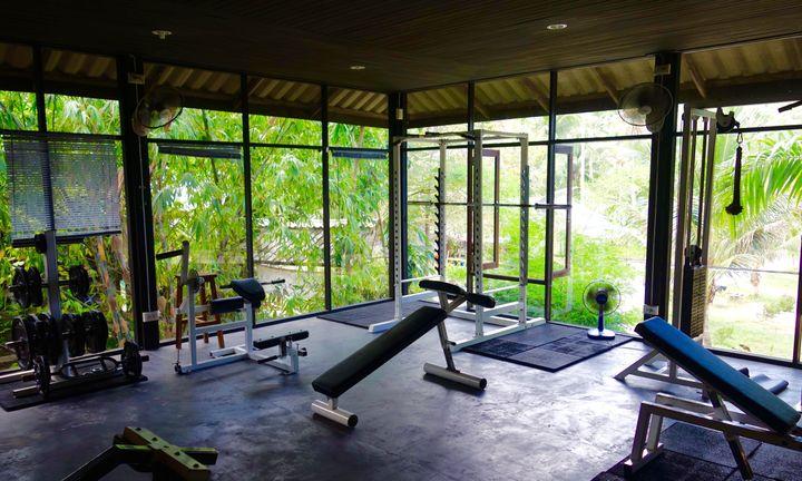 <p>The Press Gym</p>