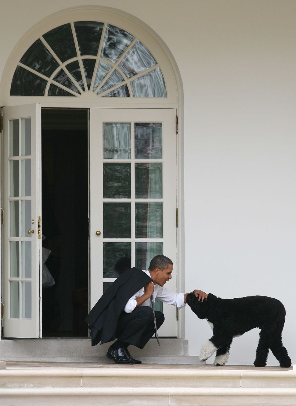 Obama pets his dog Bo outside the Oval Office of the White House on March 15, 2012, in Washington, D.C.
