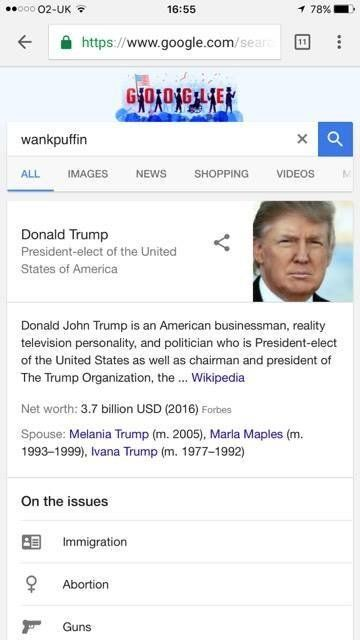 Googling 'Wankpuffin' Brings Up Donald Trump's Wikipedia