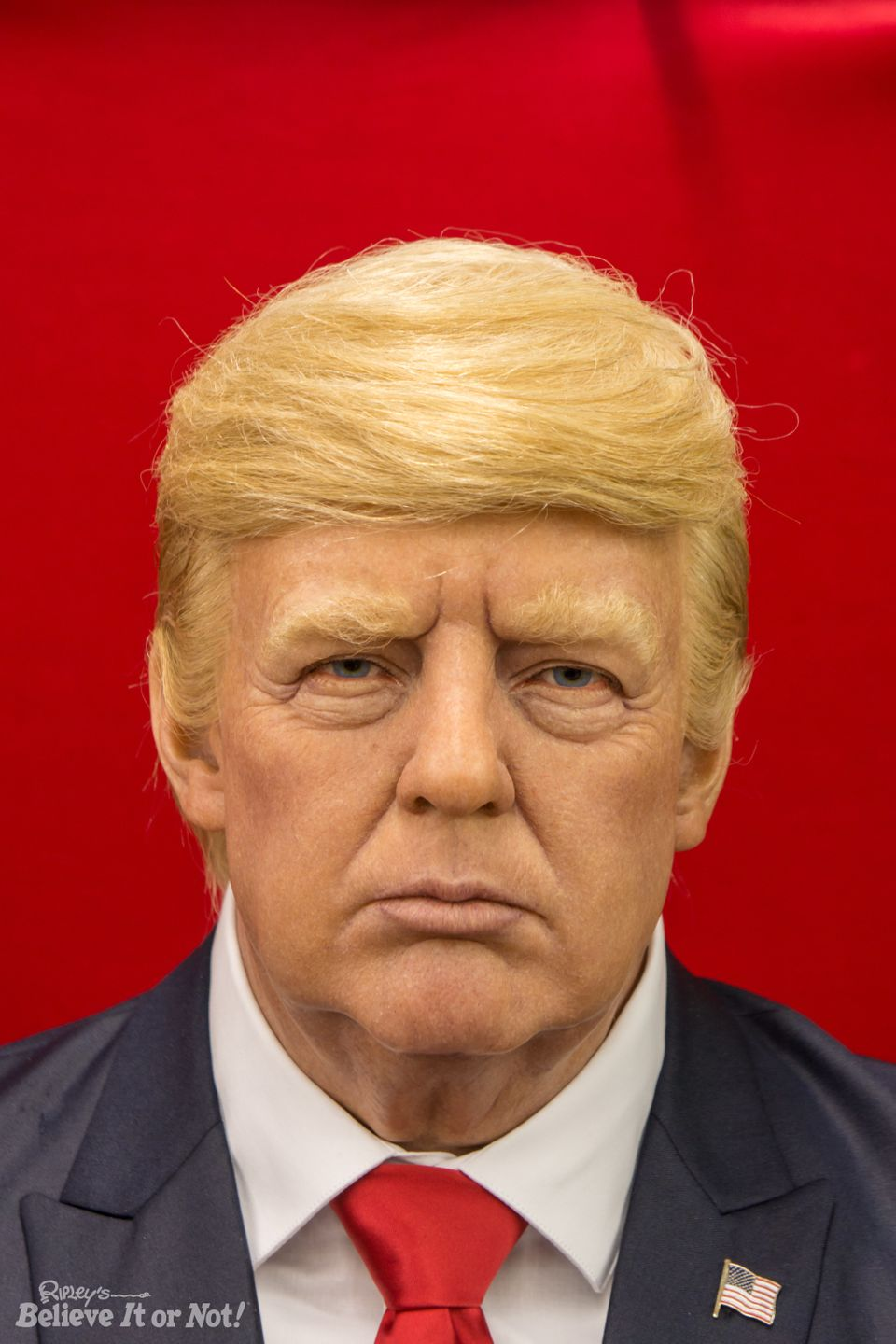 Ripley's has created three wax figures -- or dummies -- of President-elect Donald Trump.
