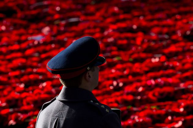 A soldier looks out over poppy wreaths laid at the