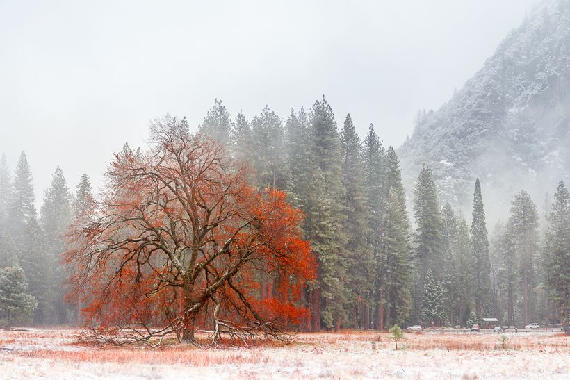 Autumn and Winter Collide in Yosemite Valley. November, 2015.