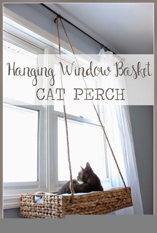 """Even the """"Grumpiest Cat"""" will be happy this holiday season with this fan-cat-stic hanging window seat. Doreen at"""