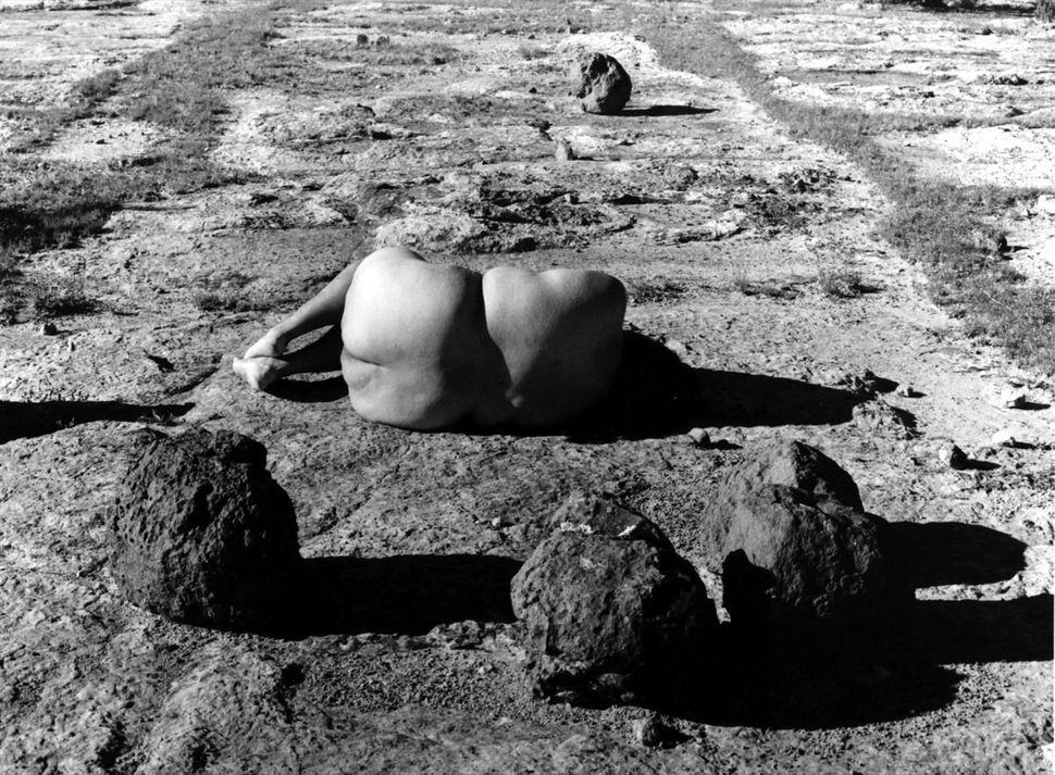 "Laura Aguilar, ""Nature Self Portraits #12,"" 1992. Ink jet print."