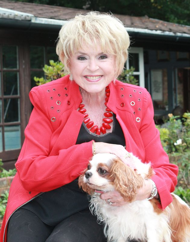 Gloria Hunniford counts her dogs as her
