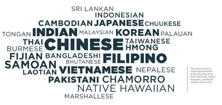 The word cloud illustrates the diversity of the AAPI communities.
