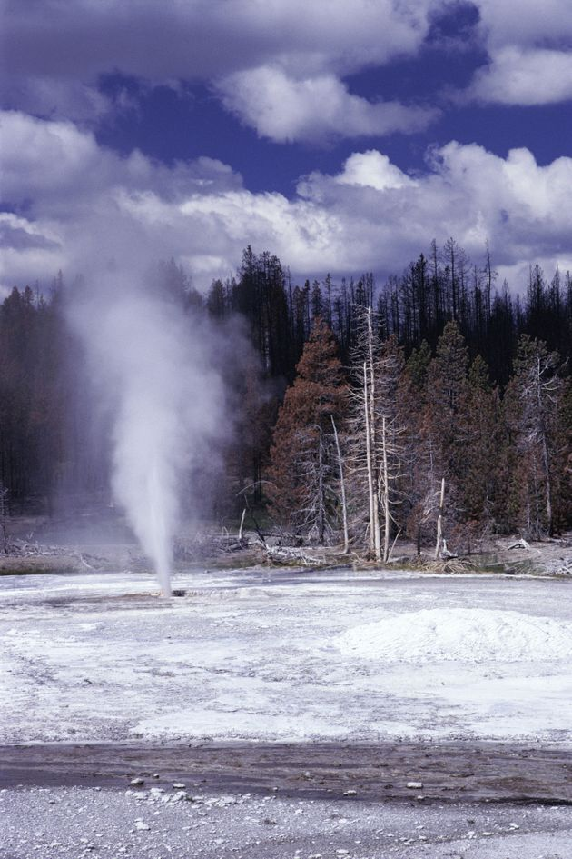 Colin and Sable Scott had left a boardwalk near Pork Chop Geyser (pictured) just before the