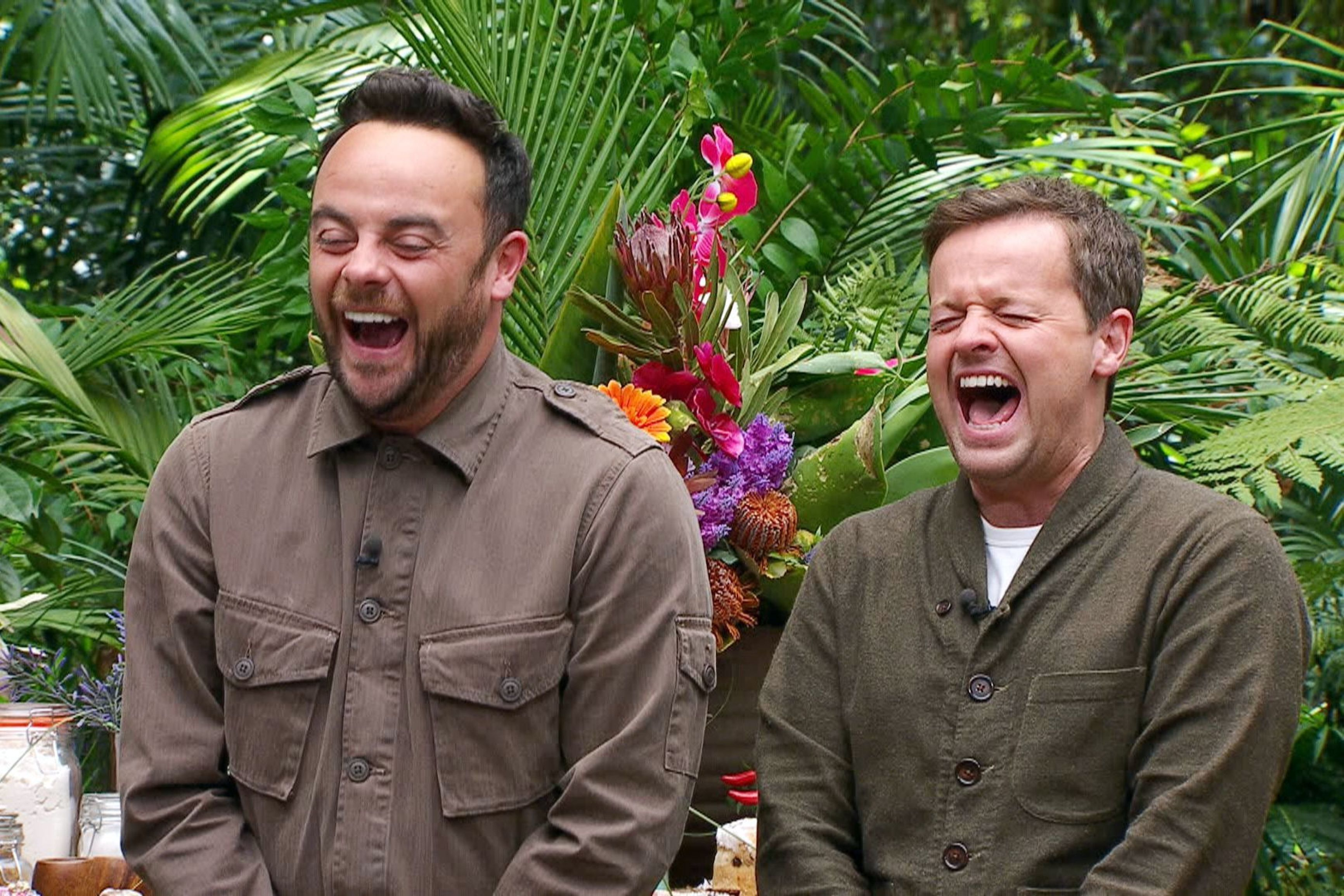 Ant And Dec's Stephen Hawking Joke Didn't Go Down Well With Some 'I'm A Celebrity'