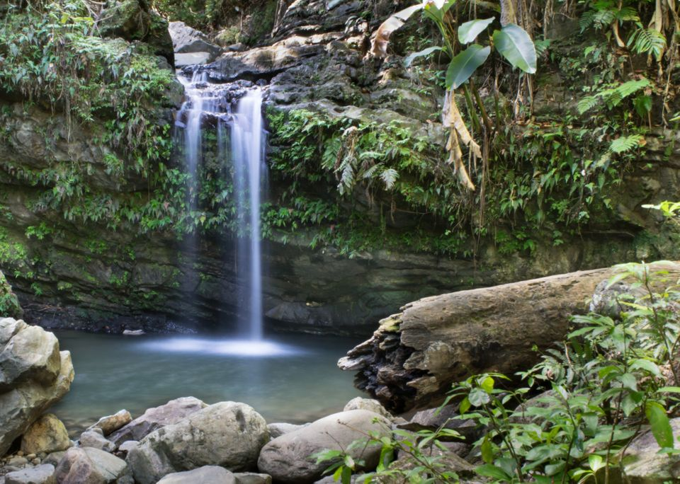 "El Yunque is not only beautiful, it's the only <a href=""http://www.fs.usda.gov/elyunque/"" target=""_blank"">tropical rainforest"