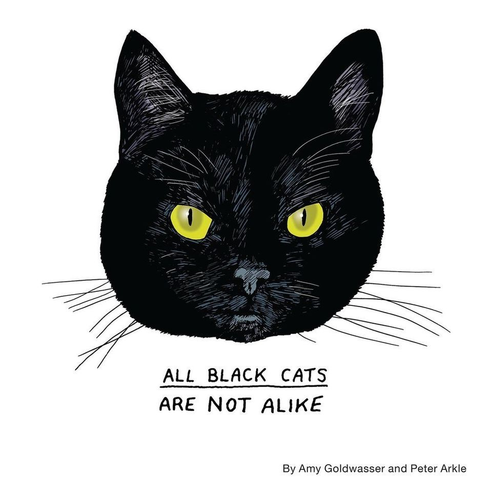 "<a href=""http://allblackcats.com/"" target=""_blank"">All Black Cats Are Not Alike</a>, courtesy of Amy Goldwasser and Pete"