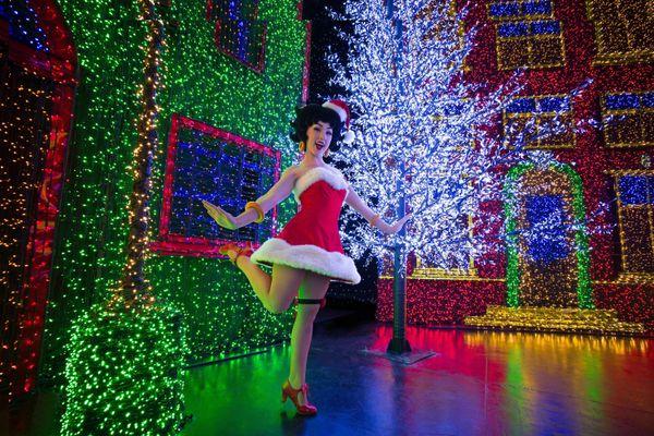 Universal Studios Singapore has a display consisting of 824,961 individual light bulbs.