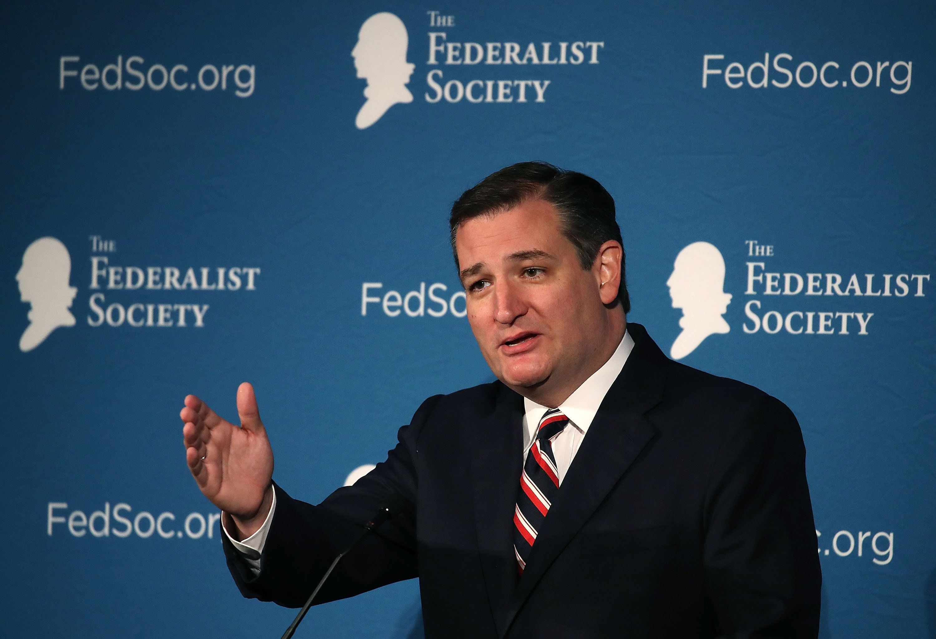 Sen. Ted Cruz (R-Texas) speaks at the Federalist Society's 2016 National Lawyers Convention in Washington, D.C.