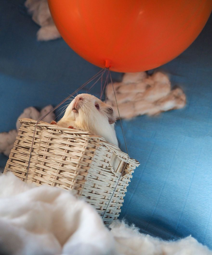 "Don't worry -- no guinea pigs were actually airborne during Audrey's ""Around The World in 80 Days"" photoshoot."