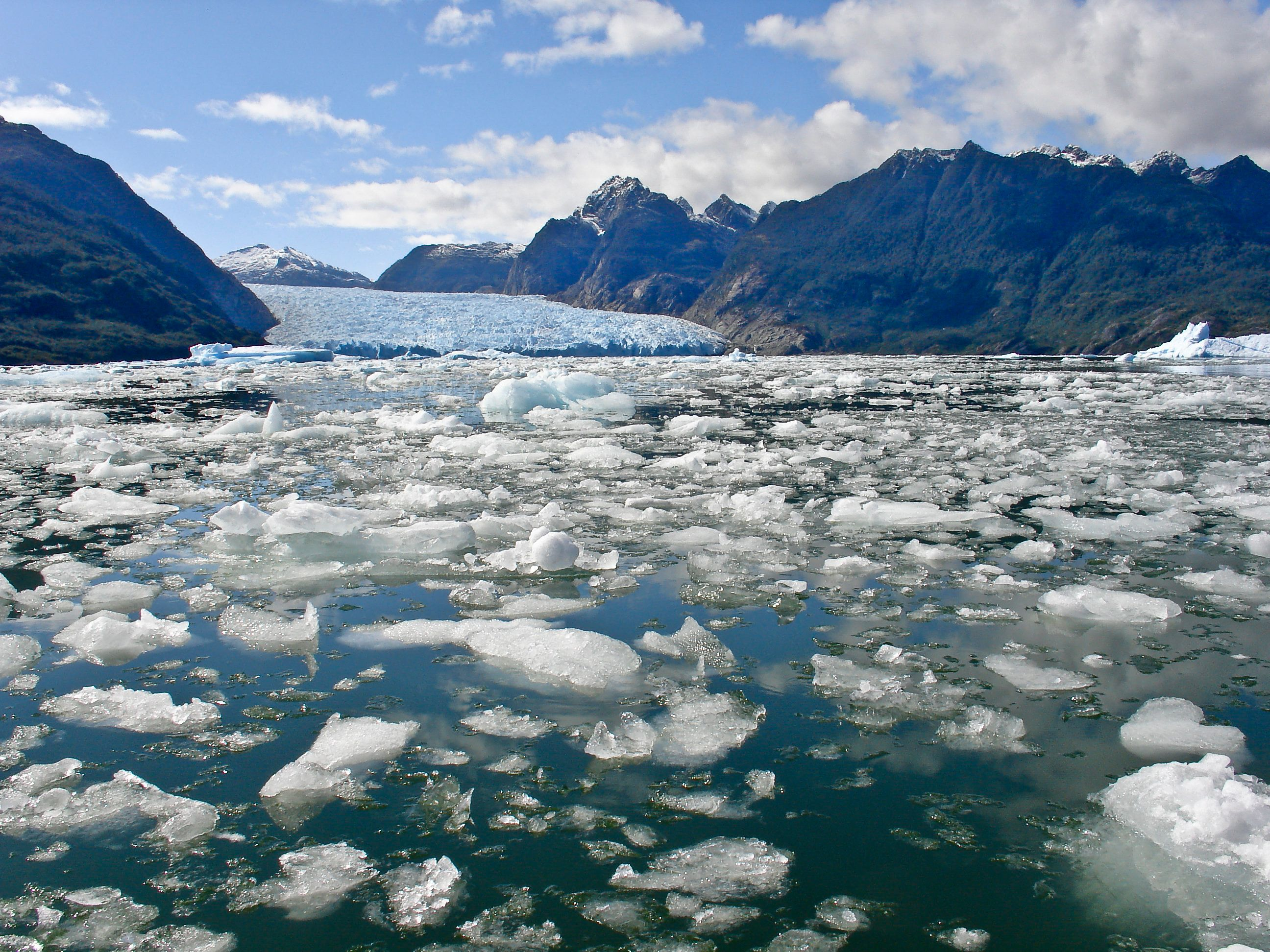 North Pole Reaches 'Remarkable' Annual Temperatures As Sea Ice Fails To