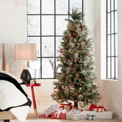 """Frosted Berry Pine Tree with Clear Lights (6 feet), $127.76 at <a href=""""https://www.wayfair.com/6-Frosted-Berry-Pine-Tree-wit"""