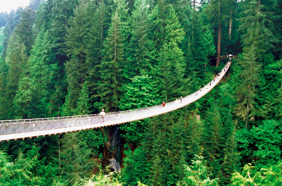 Capilano Suspension Bridge in Vancouver, British Columbia, Canada.