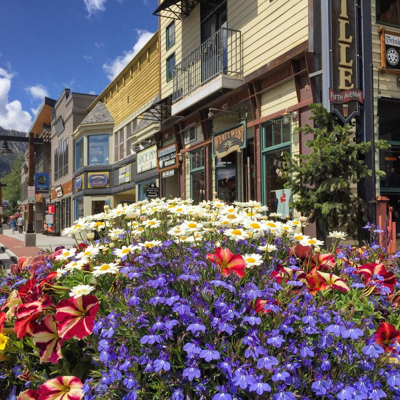 Pretty Frisco is lined with flowers.