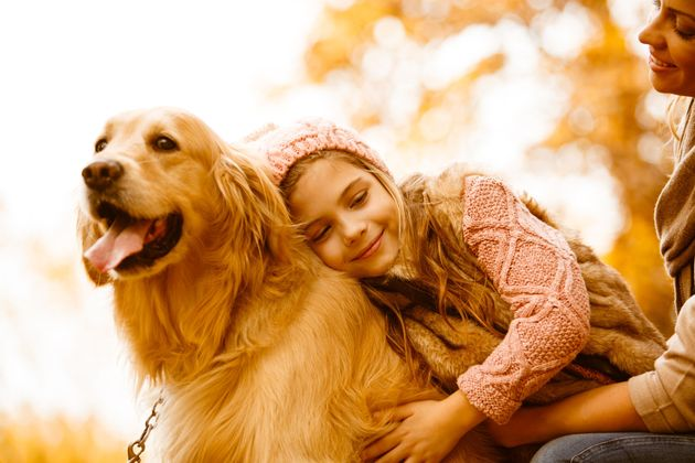 Caring For Your Dog This