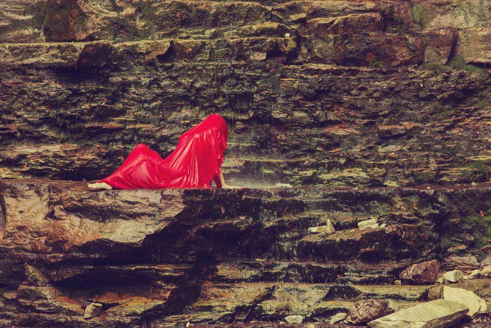 """Lobelia cardinalis,"" 2014."
