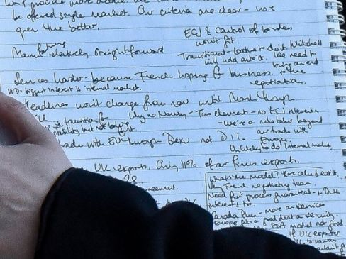 Brexit Plan? To 'Have Cake And Eat It', According To Glimpse Of Hand-Written