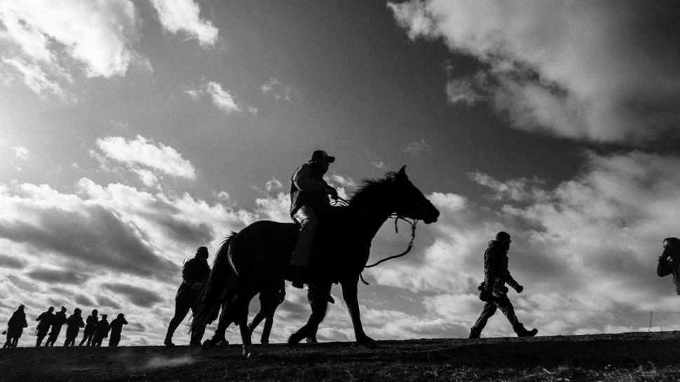 Horses are integral to the Standing Rock Sioux Tribe and have a symbolic role at Standing Rock.