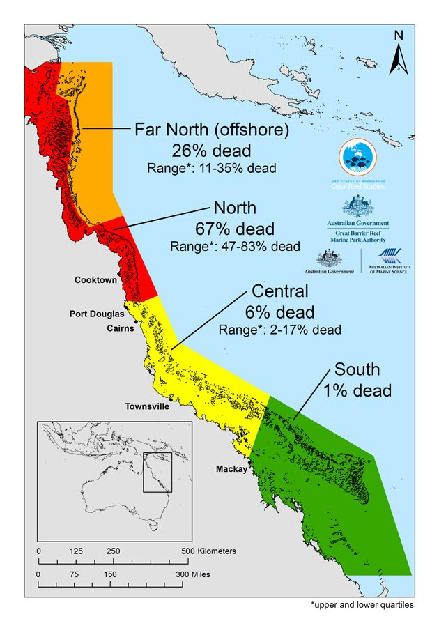 The last mass bleaching event killed more than two-thirds of the Great Barrier Reef, off the northeast...