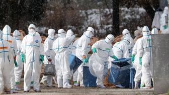 Workers wearing protective suits cull ducks after some tested positive for H5 bird flu at a poultry farm in Aomori, northern Japan,  in this photo taken by Kyodo November 29, 2016. Mandatory credit Kyodo/via REUTERS ATTENTION EDITORS - THIS IMAGE WAS PROVIDED BY A THIRD PARTY. EDITORIAL USE ONLY. MANDATORY CREDIT. JAPAN OUT.