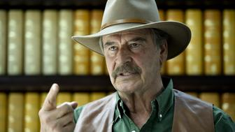 Former Mexican President Vicente Fox gestures while speaking during an interview with AFP at the Fox Center in San Francisco del Rincon, Guanajuato state, Mexico on March 8, 2016.  AFP PHOTO/ Yuri CORTEZ / AFP / YURI CORTEZ        (Photo credit should read YURI CORTEZ/AFP/Getty Images)