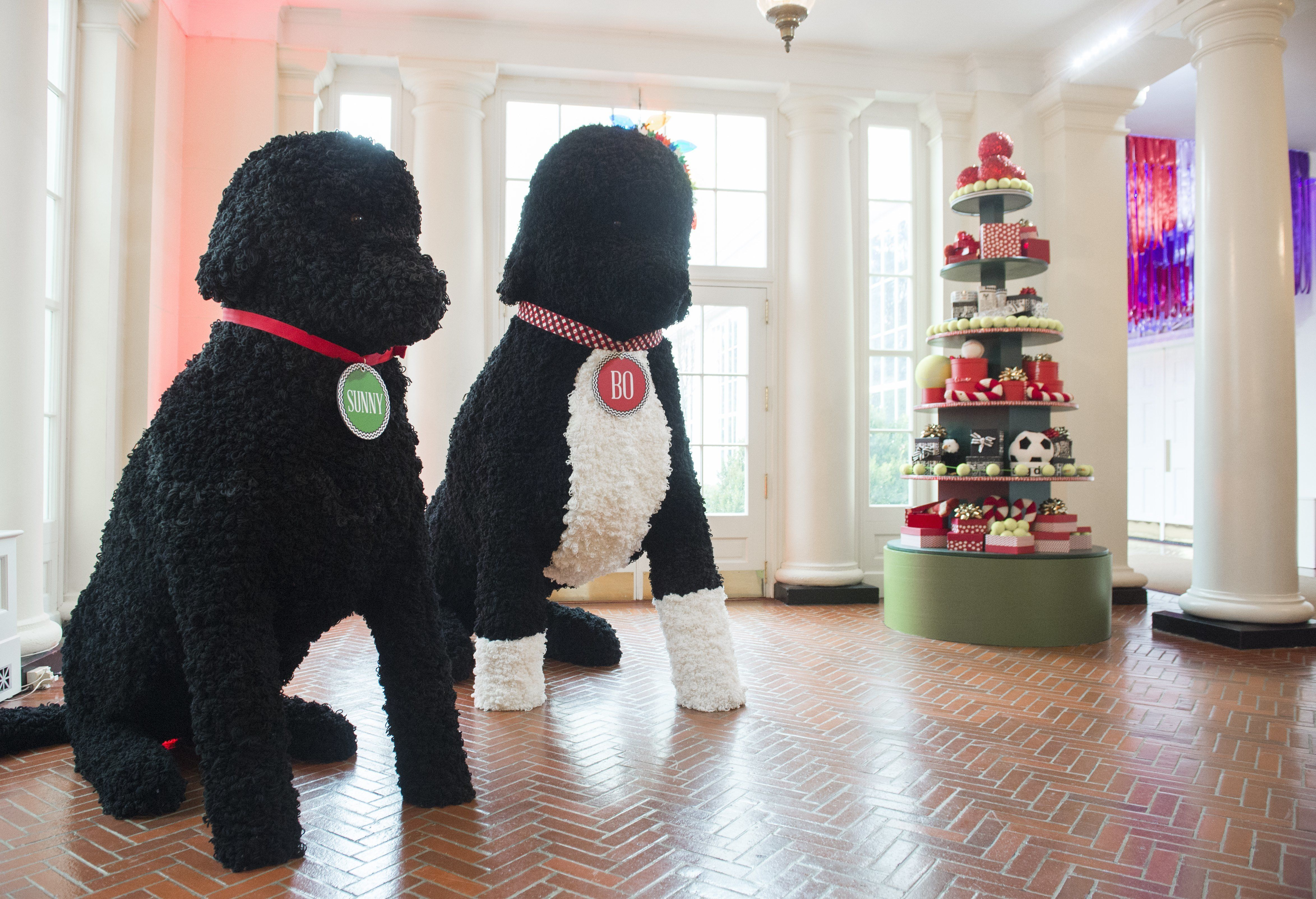 Replicas of the first family's dogs, Bo and Sunny<i>,</i> hang out in the East Wing.