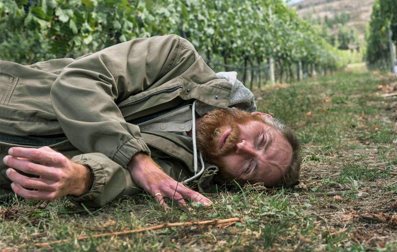 Vincent van Gogh lookalike Daniel Baker listening to the ground in the Pinot Noir vineyard at Martin's Lane Winery in the Okanagan Valley, British Columbia.