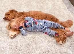 Toddler And This Labradoodle Are Best Friends And It's So Damn Cute